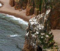 Морской каякинг в Приморье